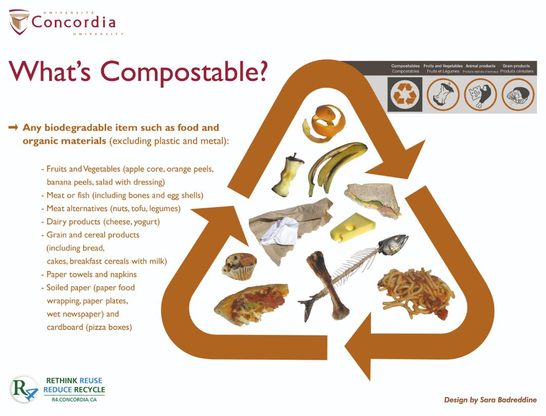 A graphic showing what can generally be composted.