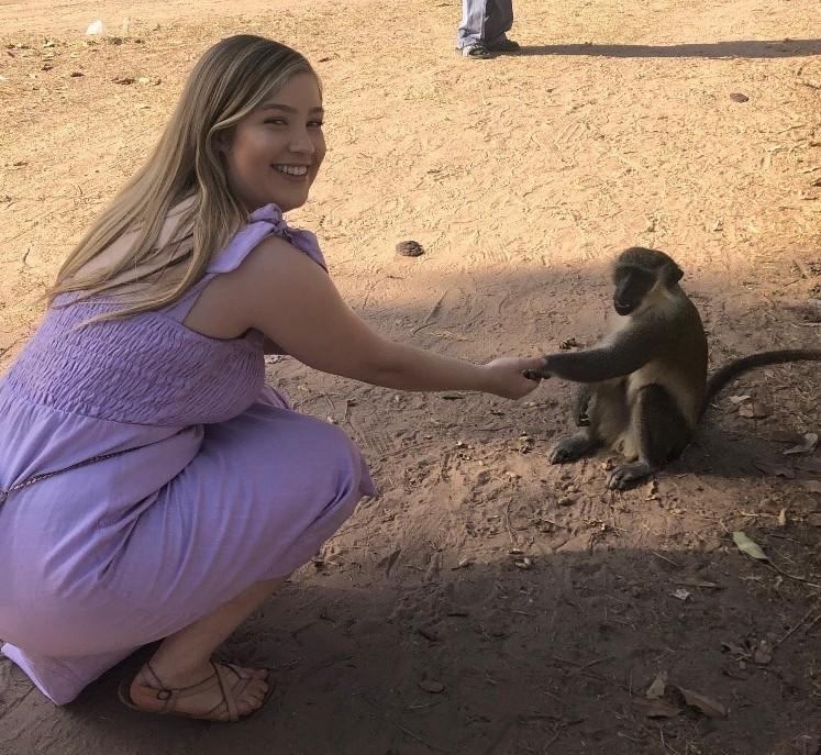 wilhelm monkey