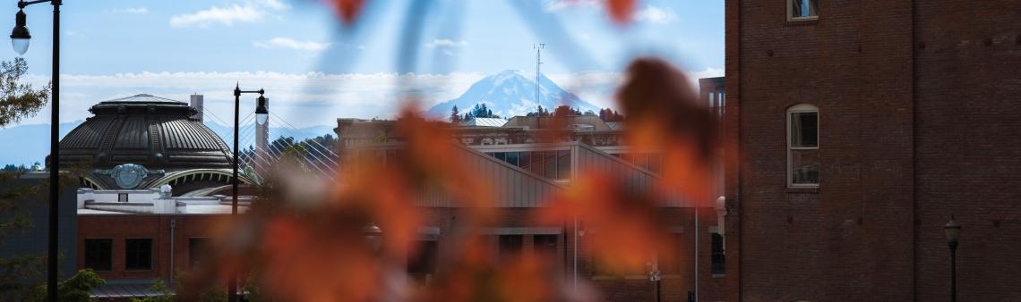 Mt Rainier from Campus