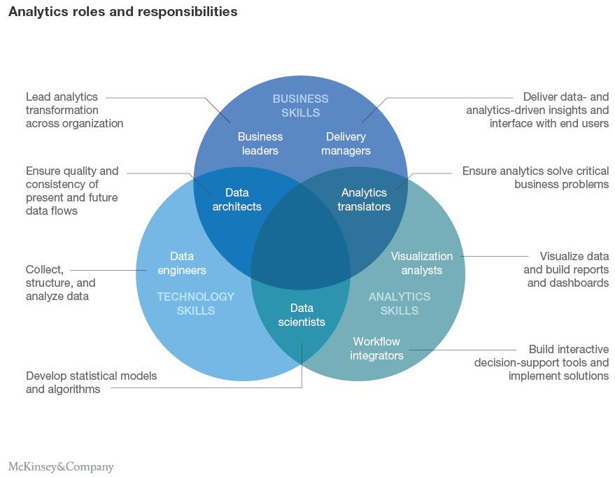 Analytics Roles