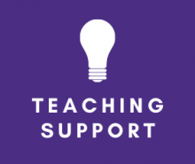 Link: Teaching Support for Instructors and Faculty